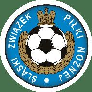 Opieka nad rosyjskojęzyczną drużyną narodową